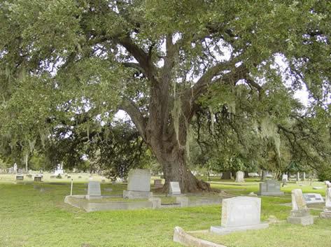 Cemetery_03_1961